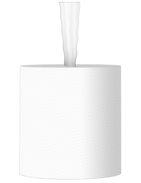 Handtuchrolle 1 lagig Zellstoff 300m 1070 Abrisse Innenauszug / ohne Hülse KARTON